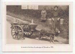 La Traite Du Lait Dans Les Paturages De Thierache En 1912 - Voiture A Chien Attelage Pot Lait  (cp Vierge) Fauquet - Paysans