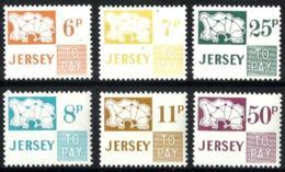 Jersey Tasas Nº 15/17-18/20 En Nuevo - Jersey