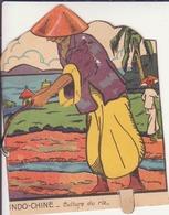 """Image Animée """"Indochine-culture Du Riz"""" - Non Classés"""