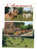 L'Avesnois - France