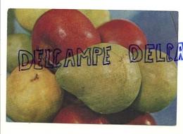 Pommes Et Poires. Société Nationale De La Petite Propriété Terrienne. Photo P. Mat - Cartes Postales