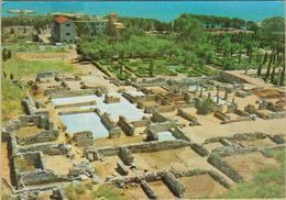 Ruinas De Ampurias - Cpm / Vista. - Gerona