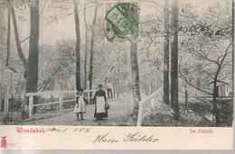 Hamburg, Wandsbeck,  Im Gehölz 1905 ?, Gelaufen, BM Fehlt - Wandsbek