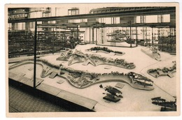 Koninklijk Museum Van Natuurlijke Historie Brussel, Zaal Der Werveldieren (pk55518) - Musea