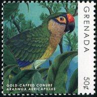 """GRENADA  2019  MNH  - """" OISEAUX / BIRDS - PARROT """"  -  1 VAL - Oiseaux"""