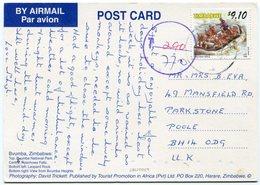 Zimbabwe - Postcard - Carte Postale - Zimbabwe (1980-...)