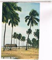SALVADOR PRAIAS  1968....... US88 - Salvador