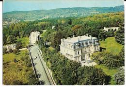 TAVERNY (Vue Aérienne) Château NESTLE Du Haut-Tertre Abeille-cartes 3256 - Taverny