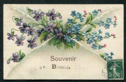 11820  CPA Souvenir De Beauvois (02) : Fleurs En Relief    1909 - Souvenir De...