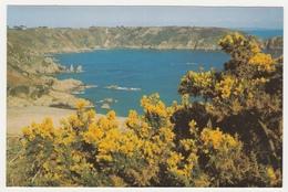 ST. MARTIN'S POINT, GUERNSEY. UNPOSTED - Guernsey