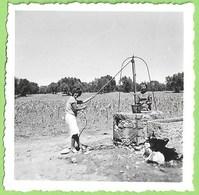 Portugal - REAL PHOTO - Senhora Tirando Água Do Poço - Mulher - Woman - Femme - Douane
