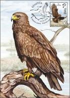 Belarus 2019 Bird Of Year Great Spotted Eagle Birds Fauna MaxiCard MC - Belarus