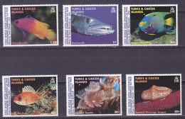 Iles TURQUES Et CAIQUES,   N°1281/86 , 1997,cote 13.95€ , Animaux Marins ( W1903/100) - Turks & Caicos (I. Turques Et Caïques)