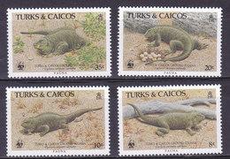 Iles TURQUES Et CAIQUES,   N°758/761 , 1986,cote 20€ , Iguane ( W1903/101) - Turks & Caicos (I. Turques Et Caïques)