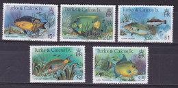 Iles TURQUES ET CAIQUES,    N°614/618 , 1983,cote 30€ , Poissons Tropicaux ( W1903/105) - Turks & Caicos (I. Turques Et Caïques)