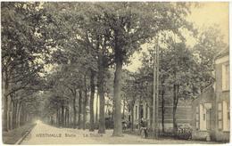 WESTMALLE - Malle - Statie - La Trappe - Malle