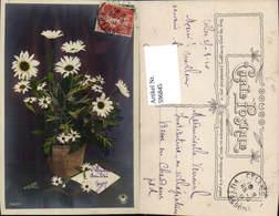 596845,Topf Blumentopf M. Margeriten Blumen - Ohne Zuordnung