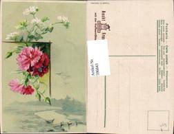 596843,Rosa Nelken U. Weiße Blüten Landschaft Blumen Pub Aecht Franck Kaffeemühle - Botanik