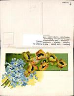 596832,Vergissmeinnicht Gelbe Offene Tulpen Blüten Blumen - Botanik