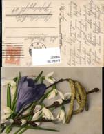 596827,Schneeglöckchen Palmkätzchenzweig Krokus Blumen - Ohne Zuordnung