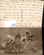 596818,Schubkarre Scheibtruhe Rosen Nelken Stiefmütterchen Blumen Pub DIX 685/4 - Botanik
