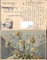596814,Künstler Ak I. Chauwie Edelweiß Alpenflora Blumen - Ohne Zuordnung