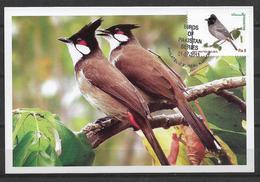 PAKISTAN 2013  MAXIMUM CARD BIRDS OF PAKISTAN BULBUL RED - VENTED - Pakistan