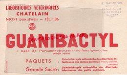 79- NIORT - BUVARD LABORATOIRES VETERINAIRES -VETERINAIRE CHATELAIN- GUANIBACTYL CHIMIOTHERAPIE-E. RAIMOND LA ROCHELLE - Produits Pharmaceutiques