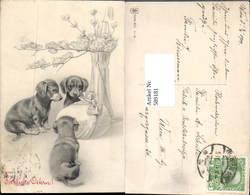 589181,tolle Künstler AK Ostern Dackel Hund - Ostern