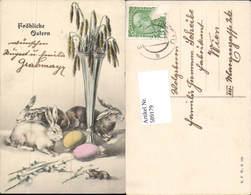 589179,tolle AK Ostern Hasen Osterhase Palmkätzchen - Ostern