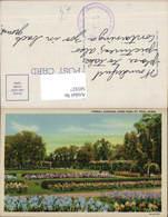 585927,Formal Gardens Como Park St Paul Saint Paul Minnesota - Vereinigte Staaten