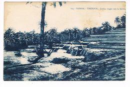 CPA.Afrique. Sahara. Timinoun.Jardins étagés Vers La Sebkha.   (F.163) - Sahara Occidental