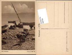 584794,Israel Kinnereth Genezareth Tiberias Pub Hefner & Berger Cracow 10 - Israel