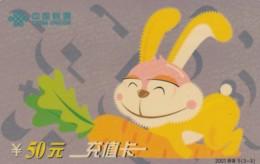 PREPAID PHONE CARD CINA (E43.48.5 - Cina