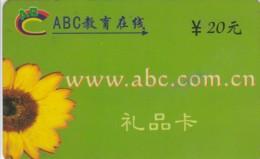 PREPAID PHONE CARD CINA (E43.48.7 - Cina
