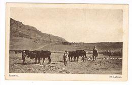 CPA.Afrique.Lessouto (Lesotho)  Labours.    (F.207) - Lesotho