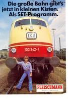 KAT307 Modellprospekt Fleischmann Modellbahnen 1976, 6-seitiger Farbfolder, Deutsch - Littérature & DVD