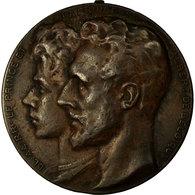 Belgique, Médaille, Landbouwe Comice, Kemmel-Yper, Veeprijskamp, 1909 - Belgique