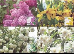 Moldova 2019 Flowering Shrubs Of Moldova 4 Maxicards - Moldova