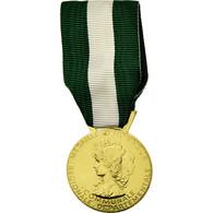 France, Médaille D'honneur Communale, Régionale Et Départementale, Médaille - Militaria