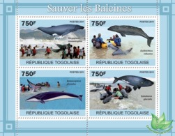 Togo  2011  Save The Whales - Togo (1960-...)