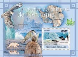 Togo  2011 Fauna  Protection Of Animals In Arctic.   Map Of  Antarctica ,penguin - Togo (1960-...)
