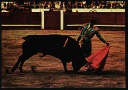 Corrida De Toros  -  Ansichtskarte Ca.1980    (10131) - Stierkampf