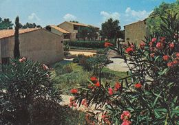 Cp , 06 , LA COLLE-sur-LOUP , Vue Des Bungalows Au Milieu Des Jardins - France