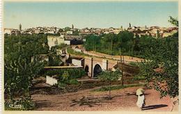 6-MEKNES(MAROC)-LE PONT PORTUGUAIS ET LA MEDINA - Meknes