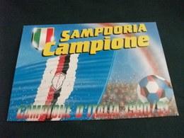 CALCIO  SAMPDORIA  CAMPIONE D'ITALIA 1990 91 BANDIERA PALLONE ANNULLO 27 5 91 CAMPIONE NAZIONALE DI CALCIO - Calcio