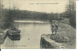 La Rivière à Mouchamps - France