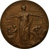 Italie, Médaille, Trieste, Mistruzzi, SUP+, Bronze - Altri
