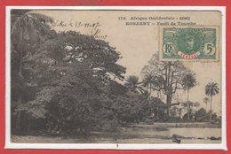AFRIQUE - Guinée - Konakry - Forêtde Tombo - Guinée Française