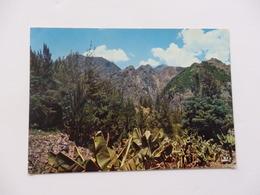 Ile De La Réunion, Route De Salazie. - Reunion